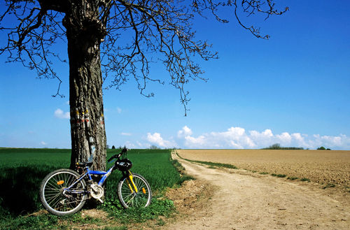 Rm-bike-dirt-road-fields-france-isre-fra343