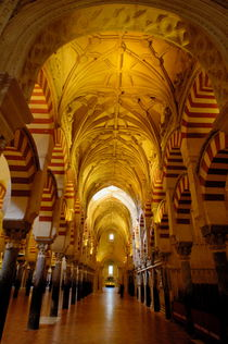 Ceilings inside the Catedral de Cordoba by Sami Sarkis Photography