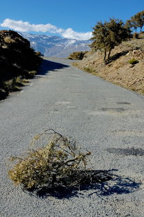 Road 411 above Capileira village in the Alpujarras mountains by Sami Sarkis Photography