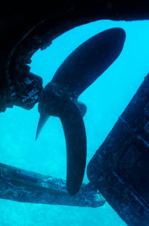 View of the propeller and rudder of a wrecked ship underwater. von Sami Sarkis Photography