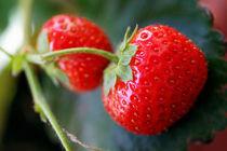 Rf-freshness-fruit-leaf-strawberries-var1111