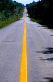 Yellow dividing line marking an empty road between Uxmal and Kabah von Sami Sarkis Photography