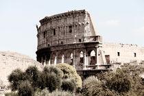 Colosseum in Rom von Norbert Fenske