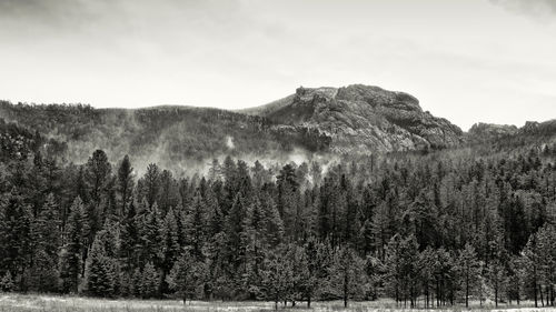 Harney-peak-snow-bw