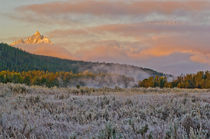 Mountain Meadow Sunrise by Barbara Magnuson & Larry Kimball