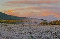 Mountain Meadow Sunrise von Barbara Magnuson & Larry Kimball