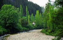 Blacks Point Reefton West Coast New Zealand by Kevin W.  Smith