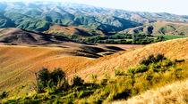 Summertime Central Otago New Zealand von Kevin W.  Smith