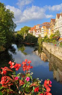 Neckarfront, Tübingen, Deutschland von Matthias Hauser