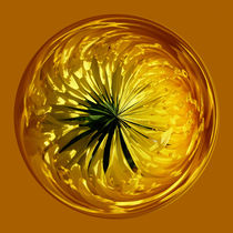 Flower in the sphere by Robert Gipson