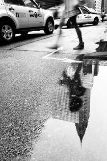 Mirror Mirror von Rob van Kessel