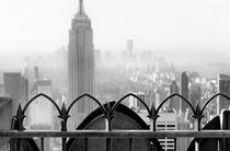 Rockefeller Fence von Rob van Kessel