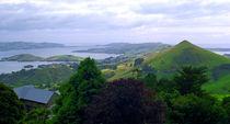 Otago Peninsular South Island New Zealand by Kevin W.  Smith