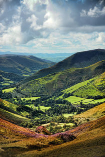 Down to the Green Valleys by Graeme Pettit