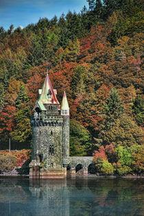 Rapunzels Tower by Graeme Pettit