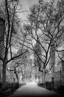 Madison Square Park von Rob van Kessel
