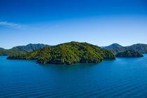 Green Island I von Daniel von Stephani