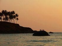 Silhouettes Near Sunset von serenityphotography