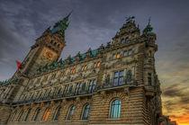 Hamburger Rathaus by photoart-hartmann