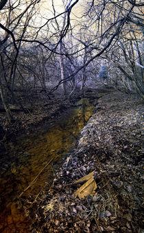 Infrared Stream von Joel Gafford
