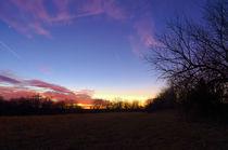 Field Sunset von Joel Gafford