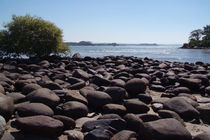 Boulders at Palolem Beach by serenityphotography