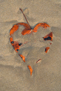 Love on the Beach Palolem von serenityphotography