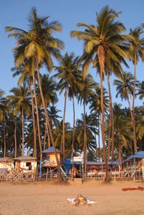 Palm Lined Beach Palolem von serenityphotography