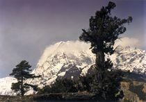 Nepal - Annapurna Himal, Sturmerprobt by Karel Plechac
