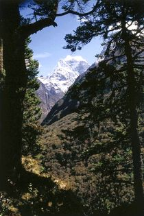 Nepal - Khumbu Himal, Aussicht auf Kangtega von Karel Plechac