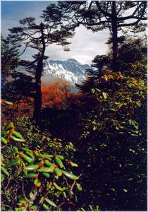 Nepal - Khumbu Himal, Everest von Tengboche by Karel Plechac
