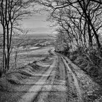 vanishing von Chris R. Hasenbichler