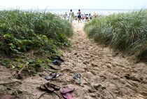 Path to the Beach by John van Benthuysen