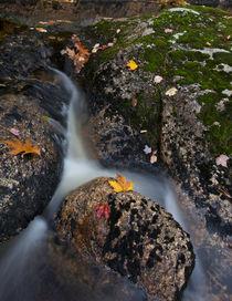 Naraguagas-river-1-brox
