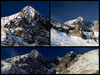 Pwinter-mountain-collage