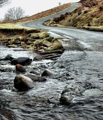 Dalby Forest Ford by Sarah Couzens