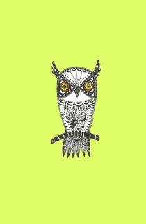 Little Owl von Casey Virata