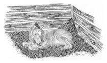 Newborn by Lawrence Tripoli