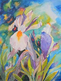 Silver Beauty Iris  von Warren Thompson
