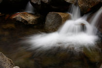 Yosemite Bridalveil Creek by Debra  Carr Brox