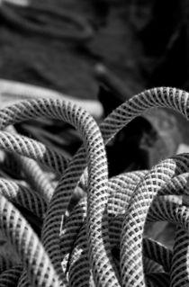 Seil / Rope von Thomas Train