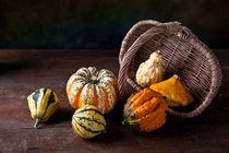 Herbst by Nailia Schwarz
