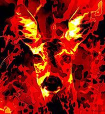 Wild in Flamen von Patrik Velicka