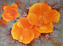 California Poppies by Miks Valdbergs