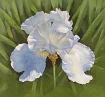 White Iris by Miks Valdbergs
