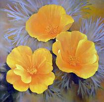 Tree California Poppies by Miks Valdbergs