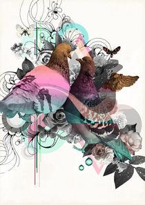 Pigeons von mmmade