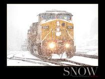 Snow von Daniel Troy