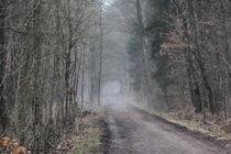 Milchstraße by © Ivonne Wentzler