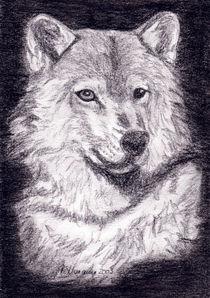 Wilder Wolf by Susanne Edele